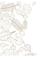 Autumn leaf skeletons template vector