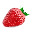 Beautiful strawberries of a realistic vector