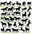 Horses silhouettes set vector