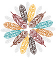 Feather decoration vector