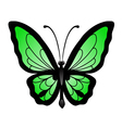 Abstract big green butterfl vector