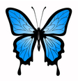 Abstract big blue butterfl vector