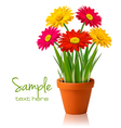 Fresh spring flowers vector