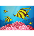 A group of stripe-colored fishes under the sea vector