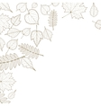 Autumn color leaves background template vector