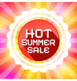 Hot summer sale retro on colorful background vector