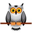 Owl vs vector