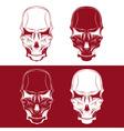 Set of skulls design template vector