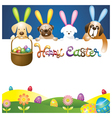 Easter eggs in basket with various dogs as bunnies vector