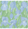 Seamless pattern with irises vector