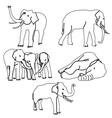 Elephant activities vector