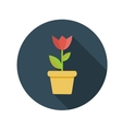 Flat design concept flower in pot with long vector