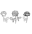 Black silhouettes of roses vector
