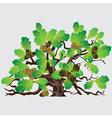 Big green oak tree with acorns vector