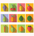 Fruits and vegetables icons vector