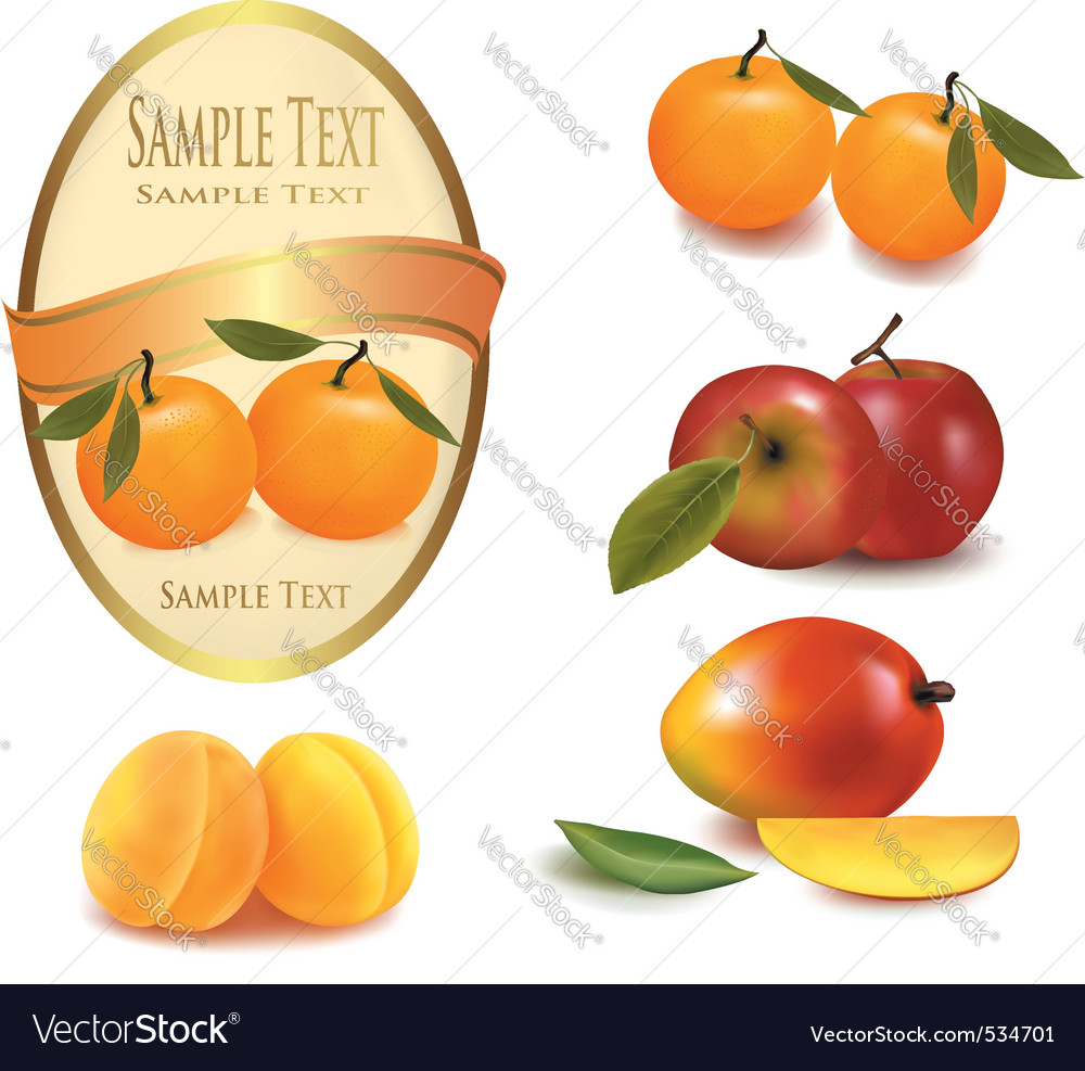 A label and some fruit vector