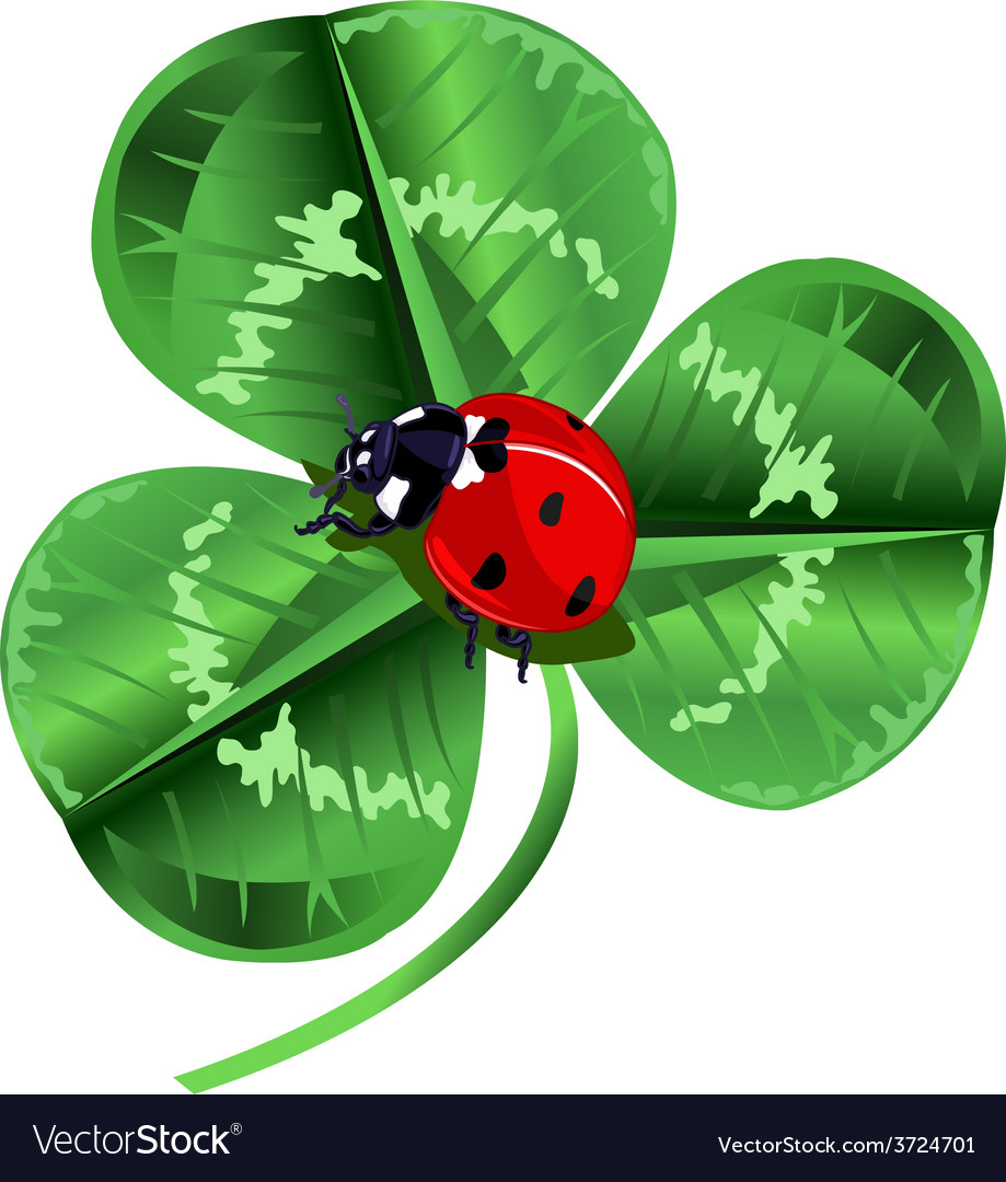 St patrick day three leafed clover and ladybug vector | Price: 3 Credit (USD $3)
