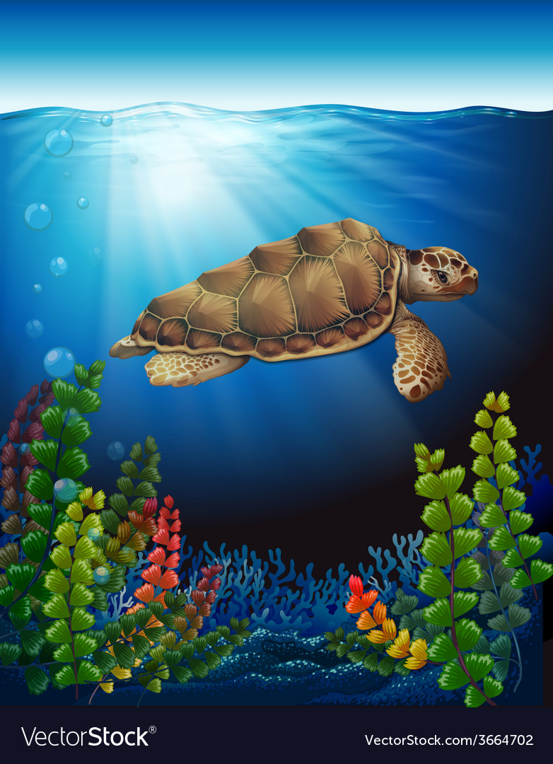 A sea turtle underwater vector | Price: 3 Credit (USD $3)