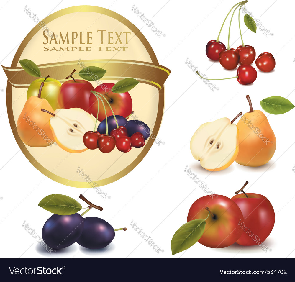 Gold label with sweet fruit vector | Price: 3 Credit (USD $3)