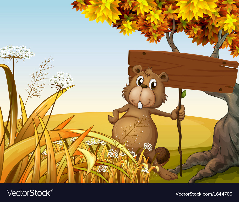 A fat beaver holding an empty signboard vector | Price: 3 Credit (USD $3)