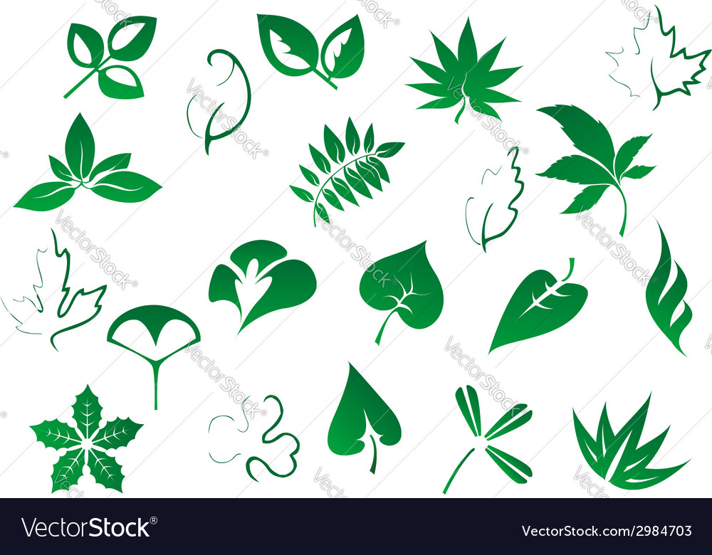 Green tree and plants leaves set vector | Price: 1 Credit (USD $1)