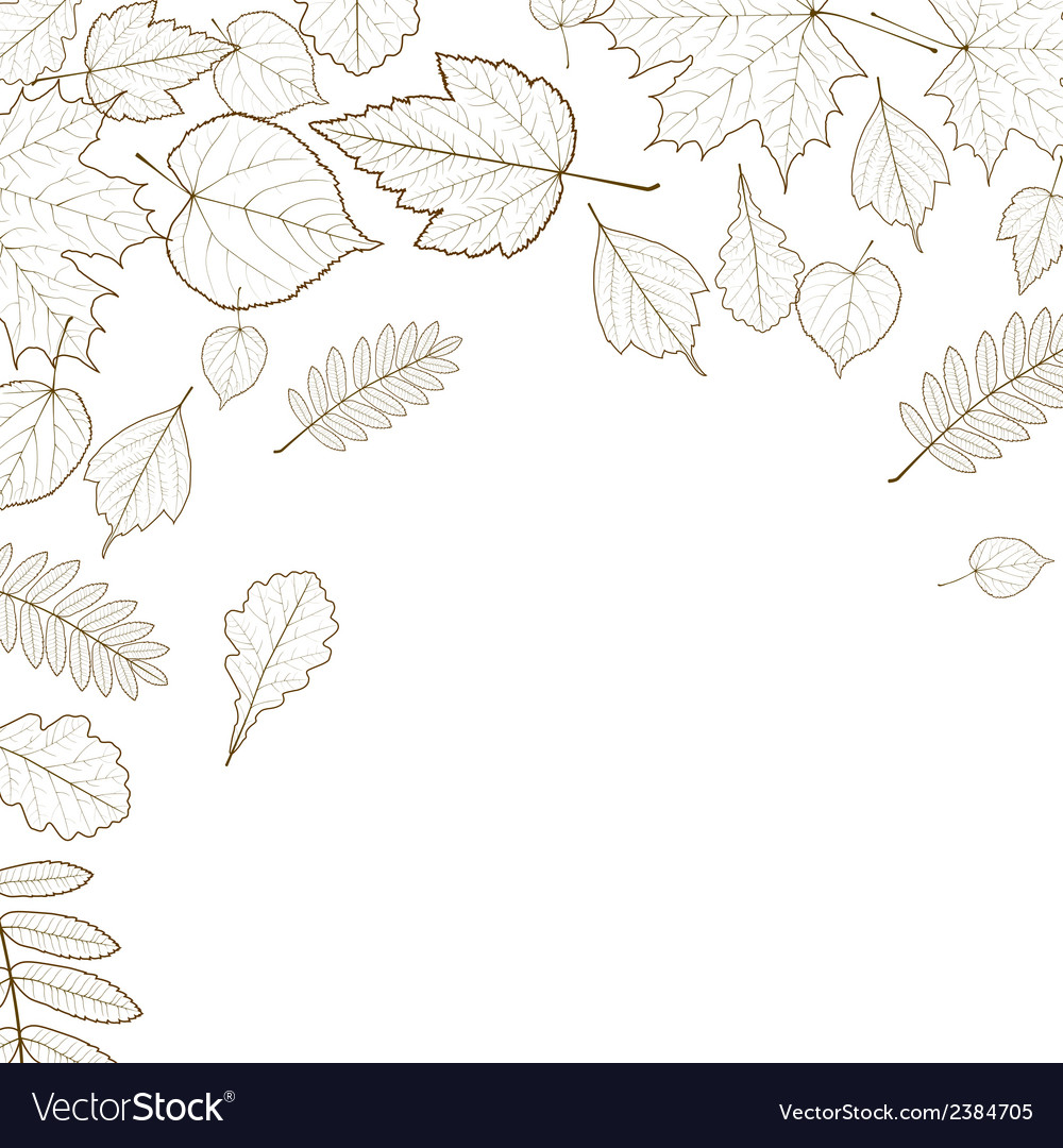 Autumn leaf skeletons template vector | Price: 1 Credit (USD $1)
