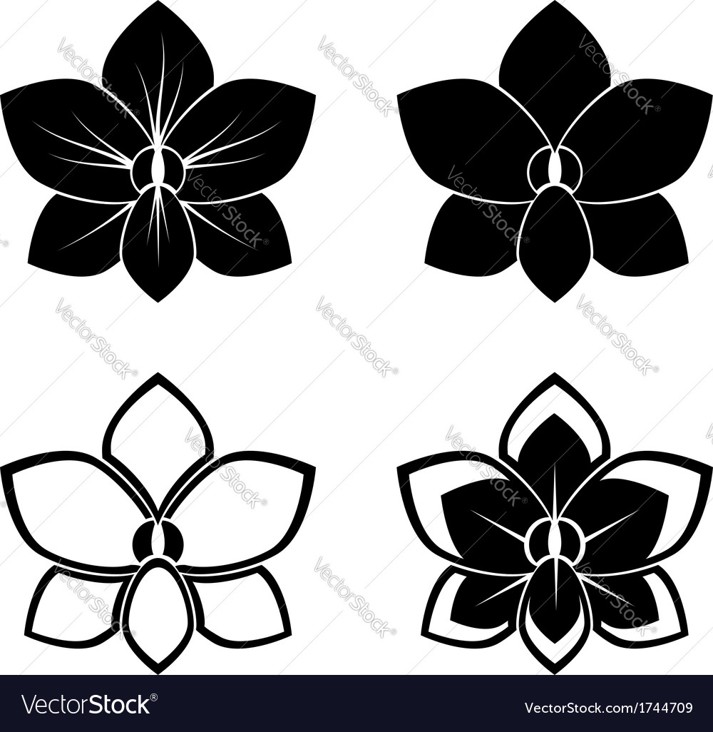 Orchid silhouettes vector | Price: 1 Credit (USD $1)