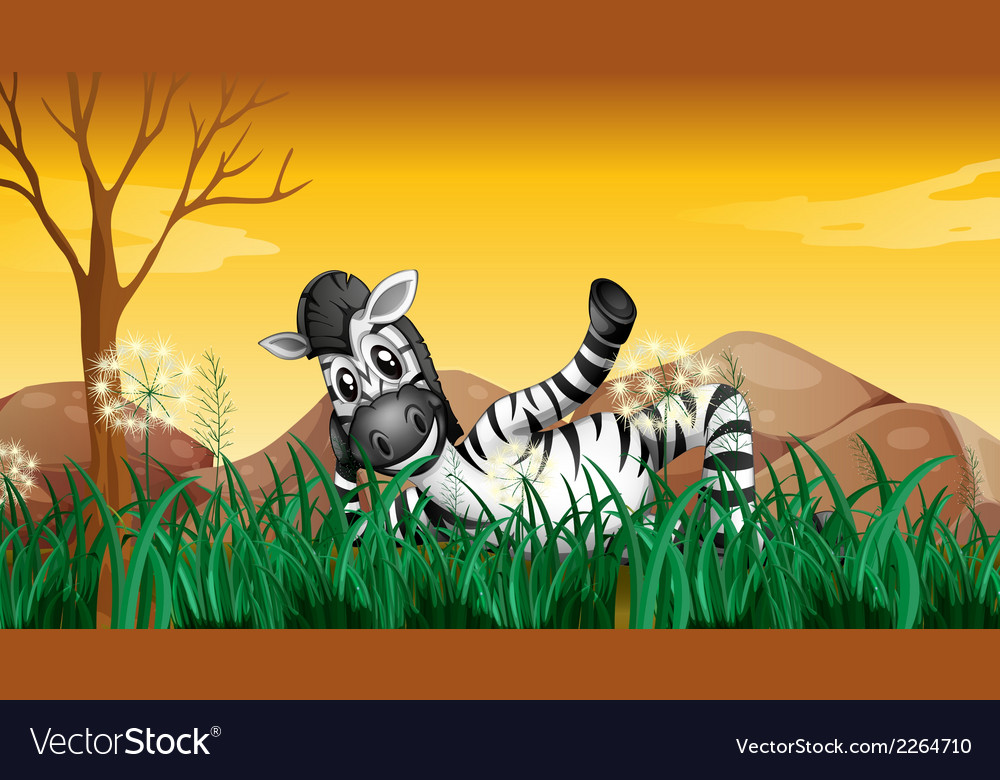 A zebra resting at the grassland near the big vector | Price: 1 Credit (USD $1)