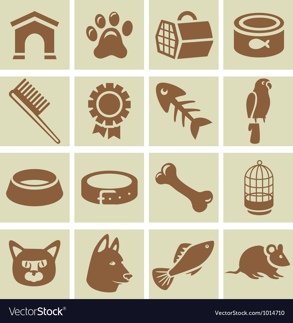 Design elements for veterinary vector | Price: 1 Credit (USD $1)