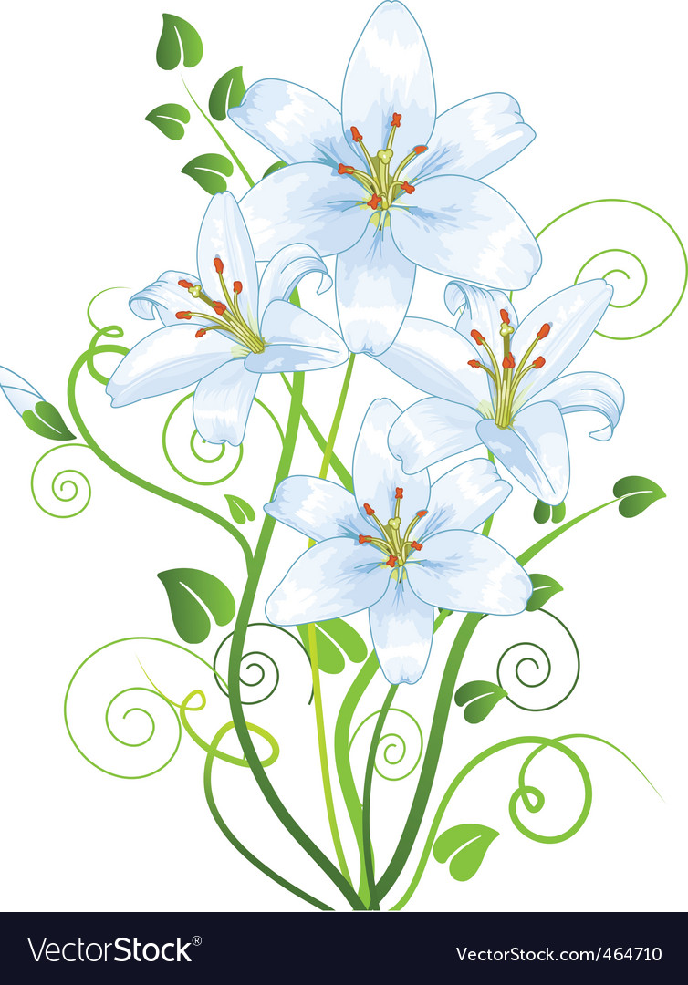 Lilly vector | Price: 1 Credit (USD $1)