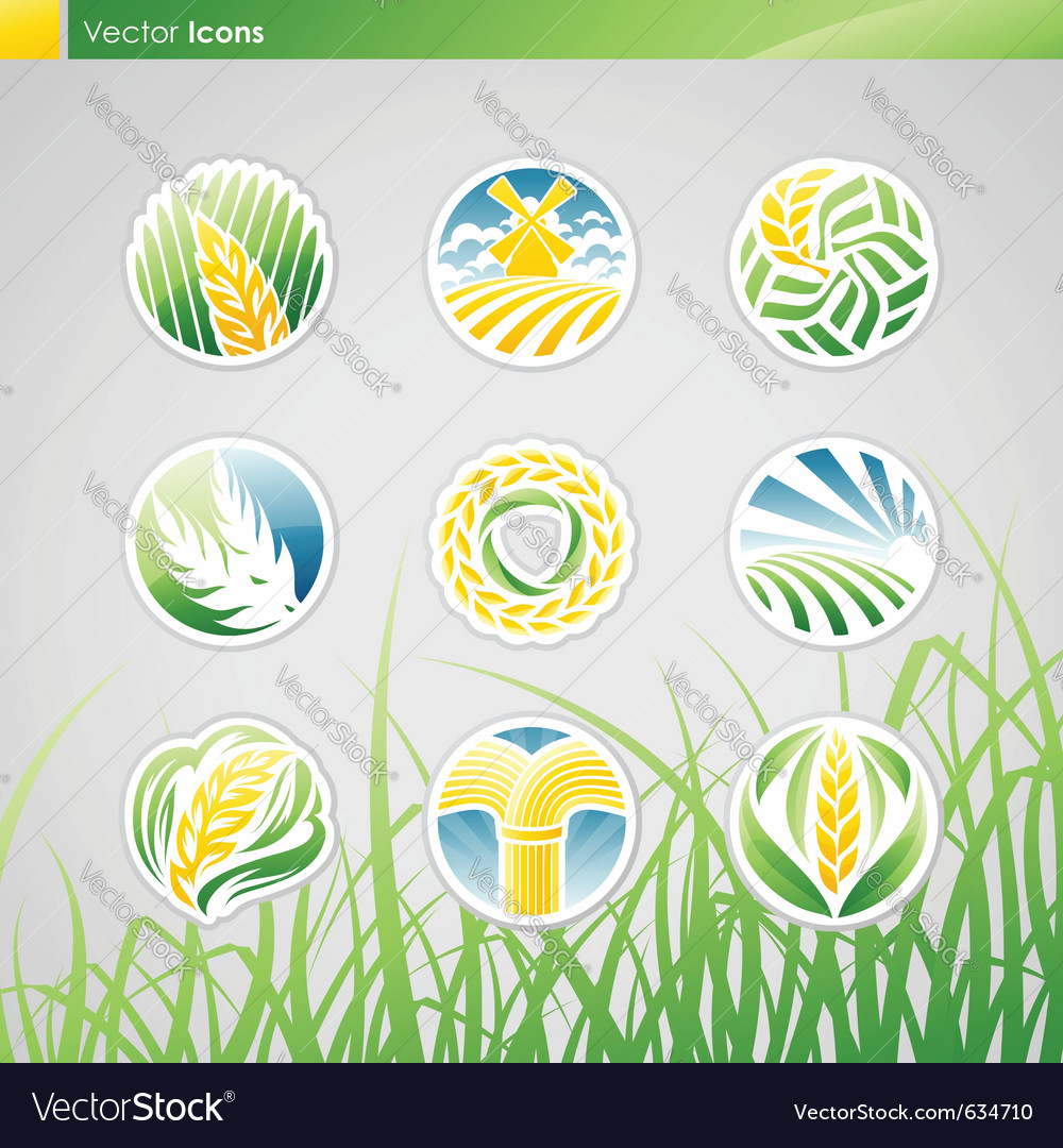 Wheat and rye vector | Price: 3 Credit (USD $3)