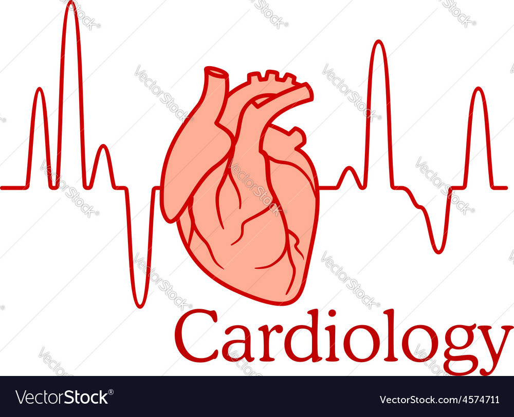 Cardiology concept with an ecg and heart vector | Price: 1 Credit (USD $1)