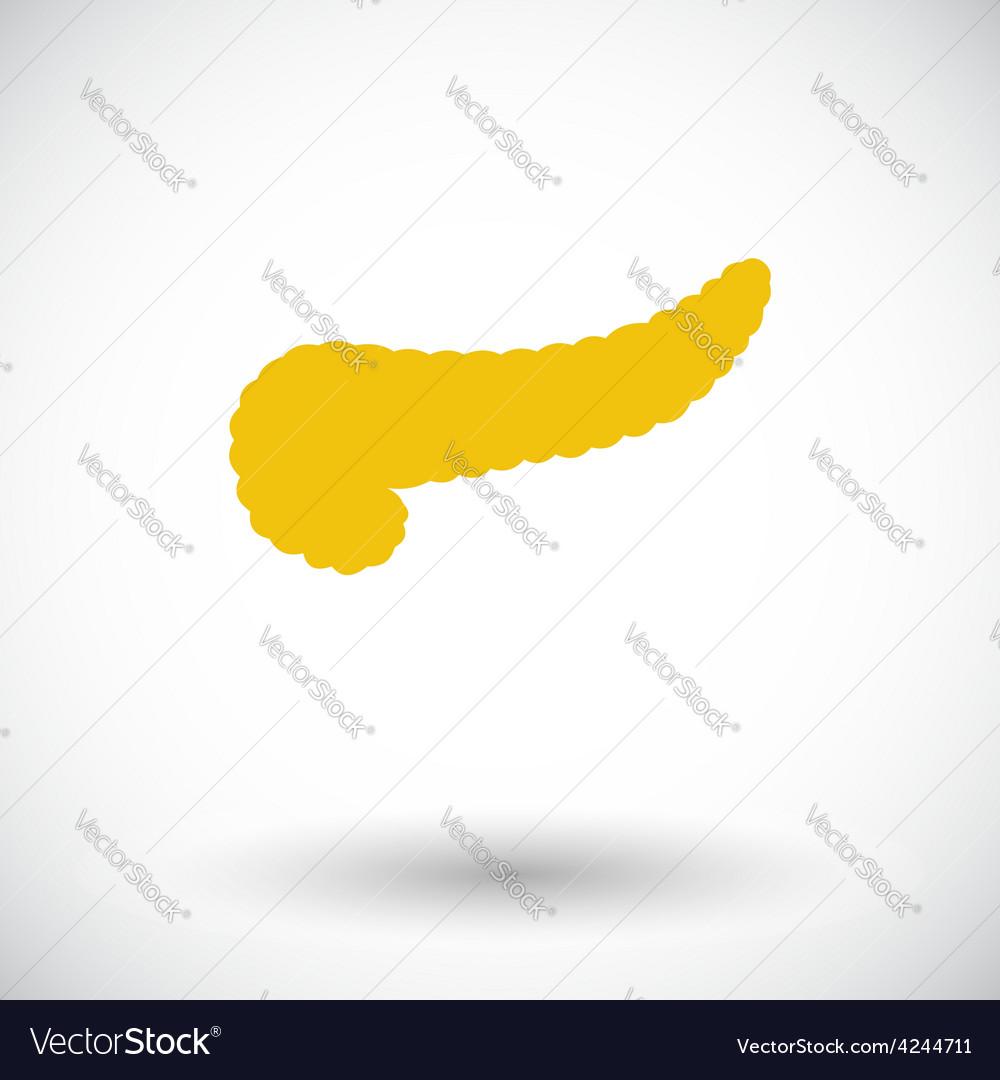 Pancreas icon vector | Price: 1 Credit (USD $1)