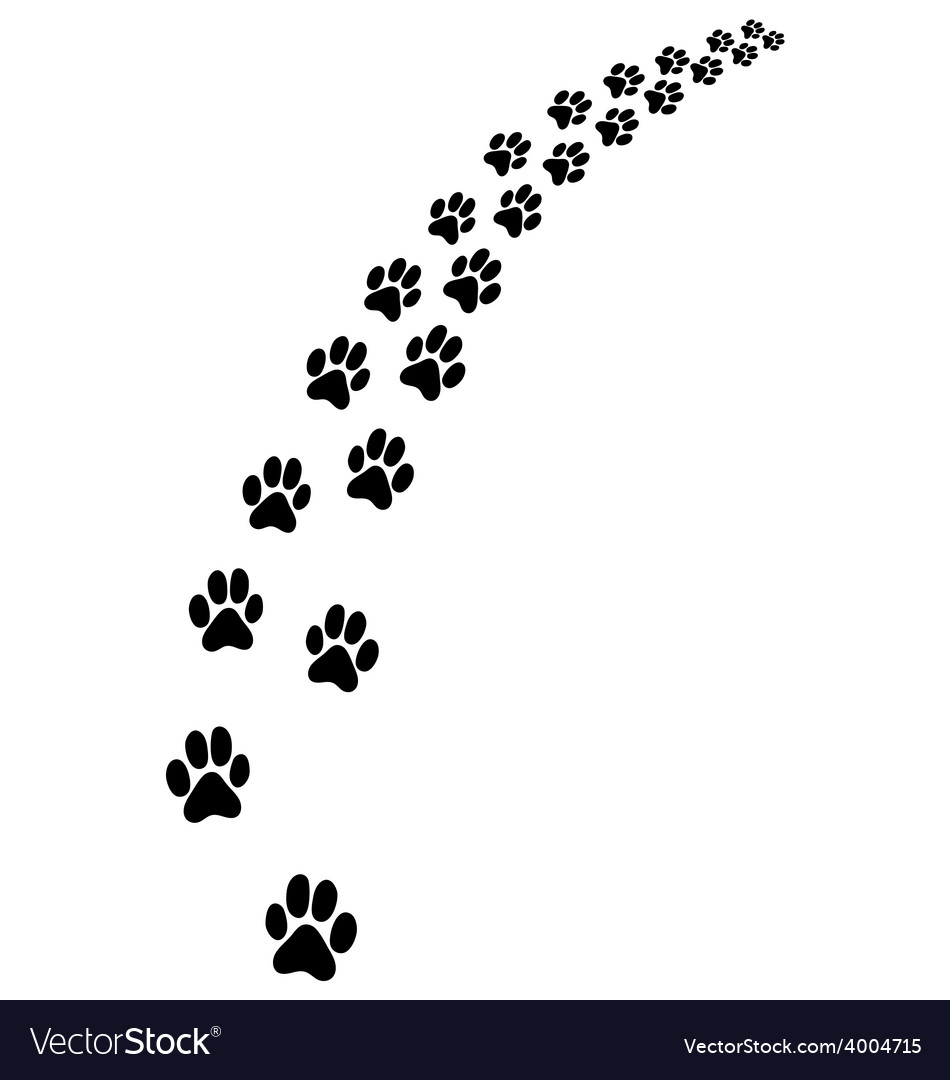Trail of cat vector | Price: 1 Credit (USD $1)
