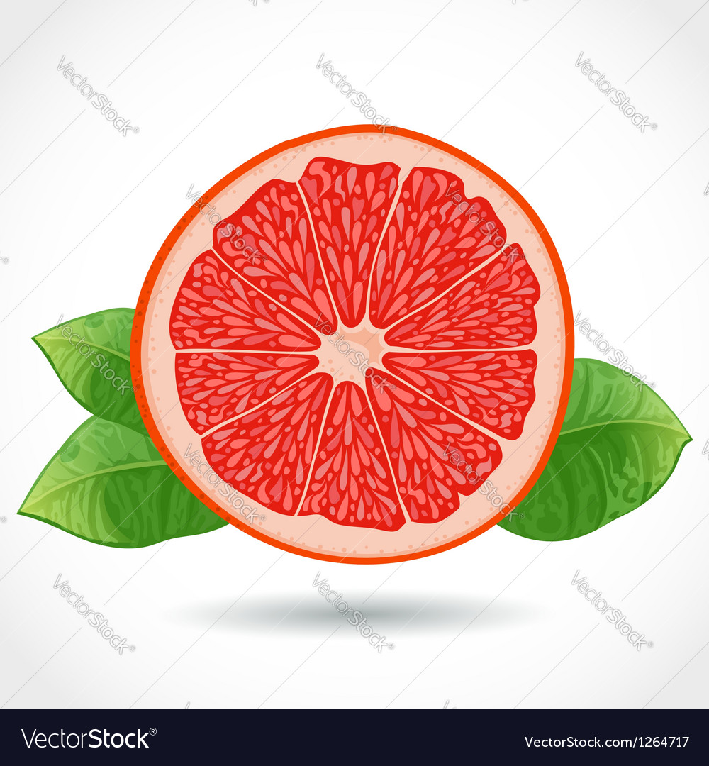 Fresh ripe piece of grapefruit isolated on white vector | Price: 3 Credit (USD $3)
