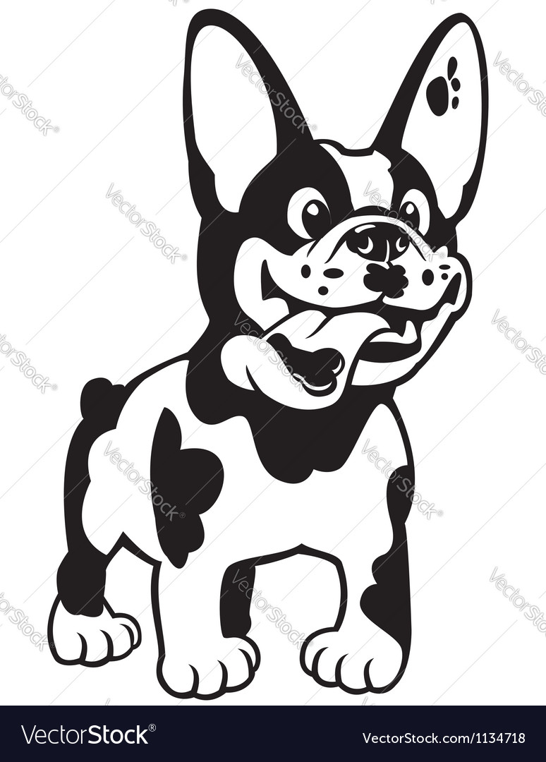 Cartoon french bulldog black white vector | Price: 1 Credit (USD $1)