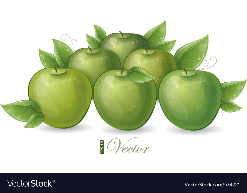 Green apples vector   Price: 3 Credit (USD $3)