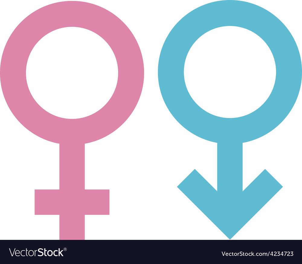 Gender signs vector | Price: 1 Credit (USD $1)