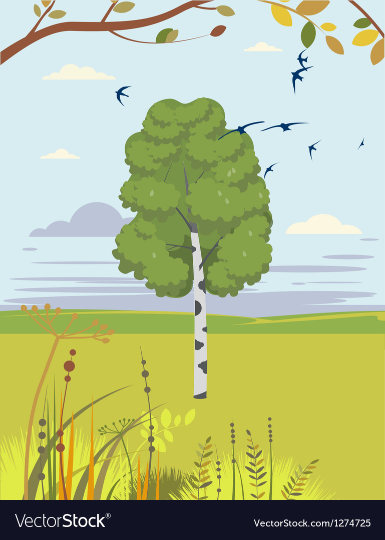 Birch and swallows summer landscape vector | Price: 1 Credit (USD $1)