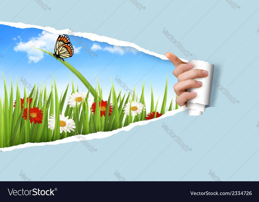 Summer background with flowers grass and a ladybug vector | Price: 1 Credit (USD $1)