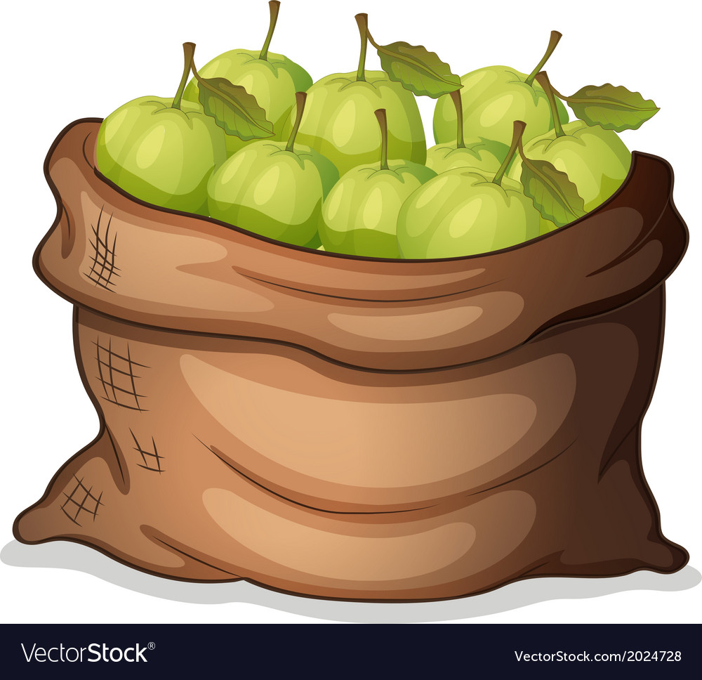 A sack of guavas vector | Price: 1 Credit (USD $1)