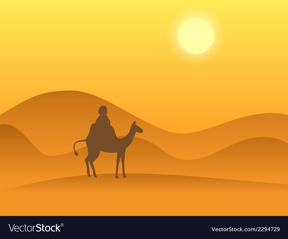 Desert camel vector | Price: 1 Credit (USD $1)