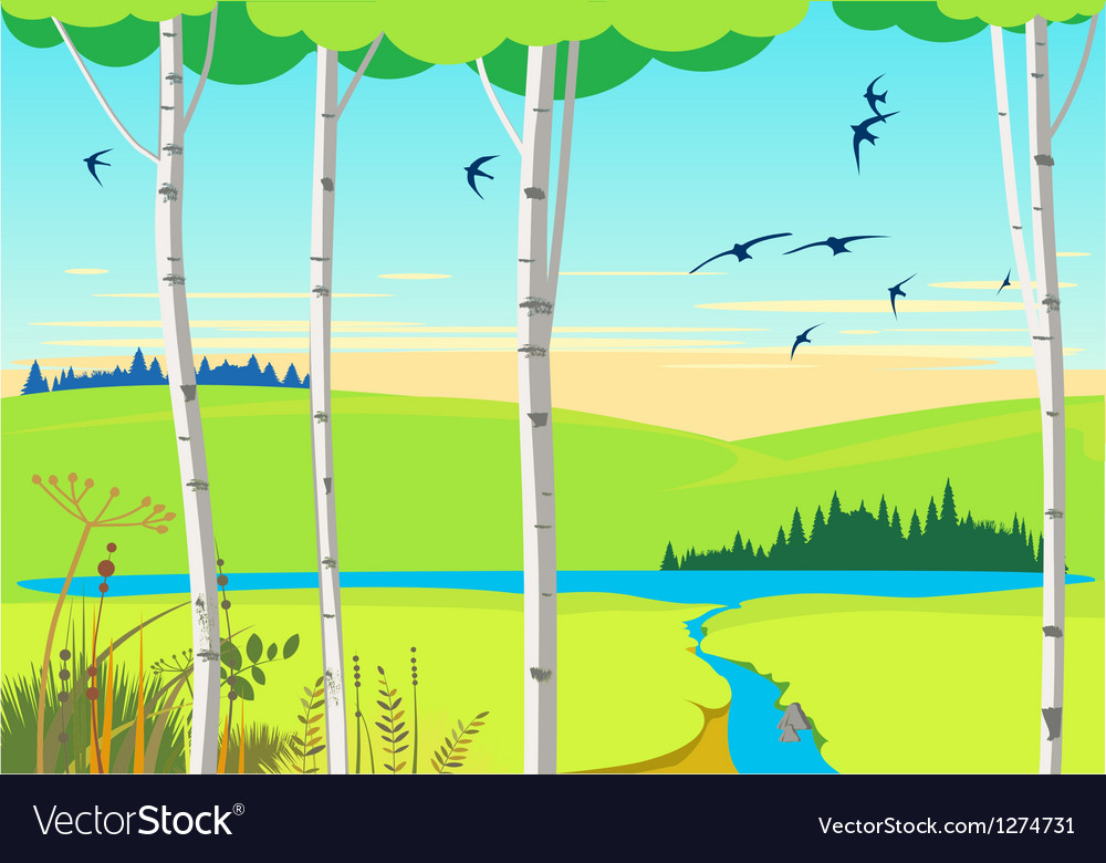 Birch landscape and swallows vector | Price: 1 Credit (USD $1)