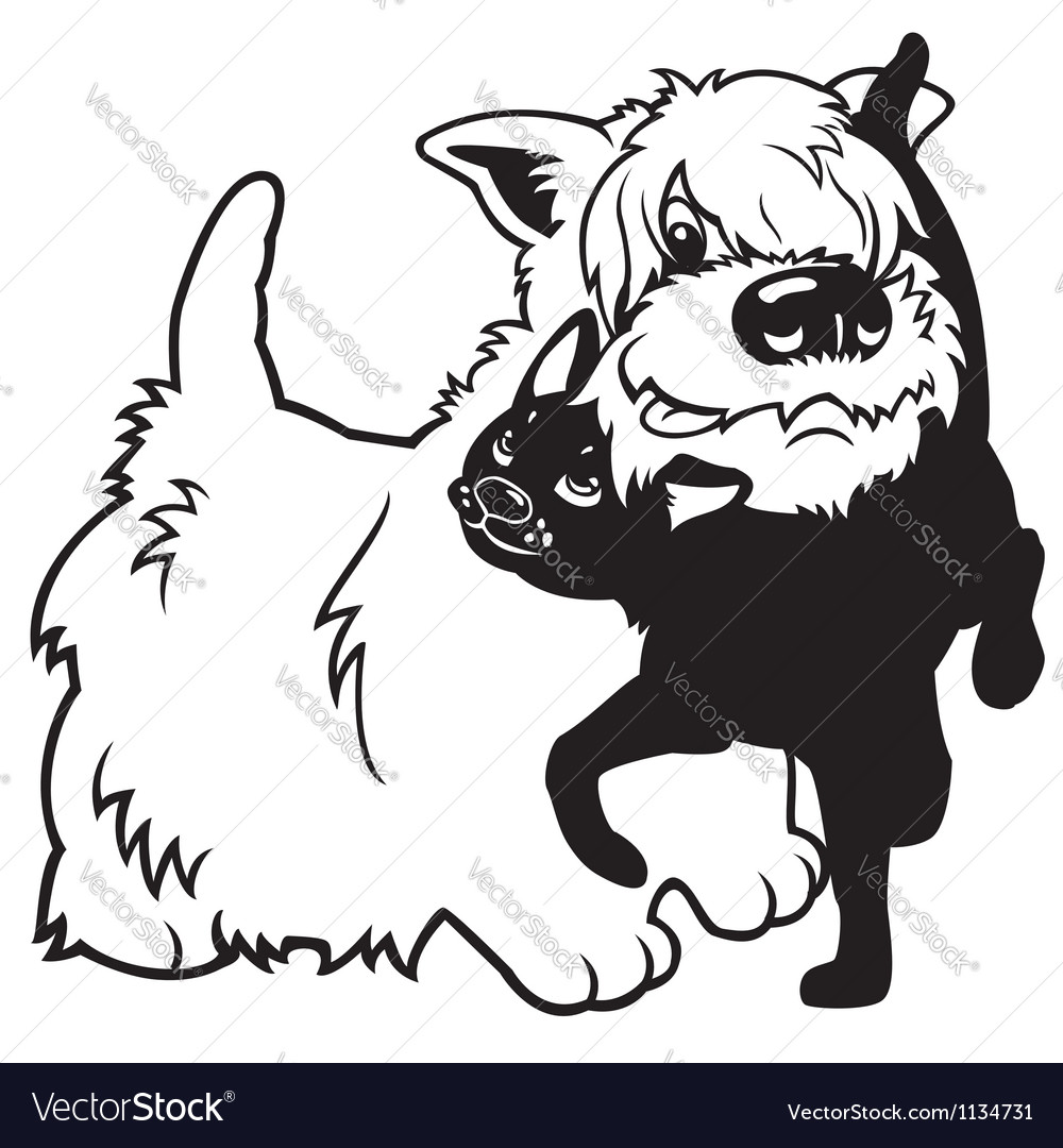 Cartoon west terrier and cat black white vector | Price: 1 Credit (USD $1)