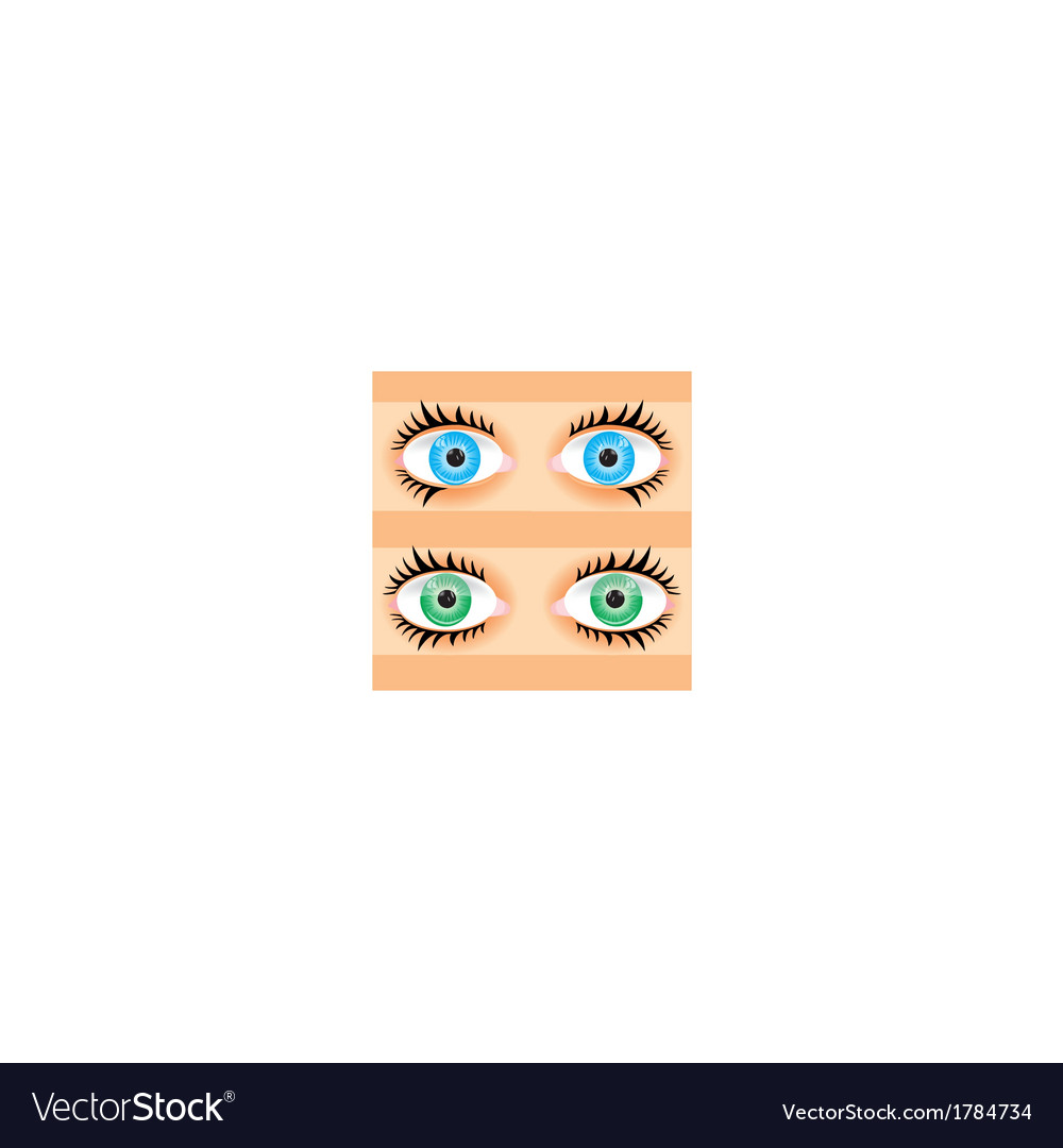 Eye of the person vector | Price: 1 Credit (USD $1)