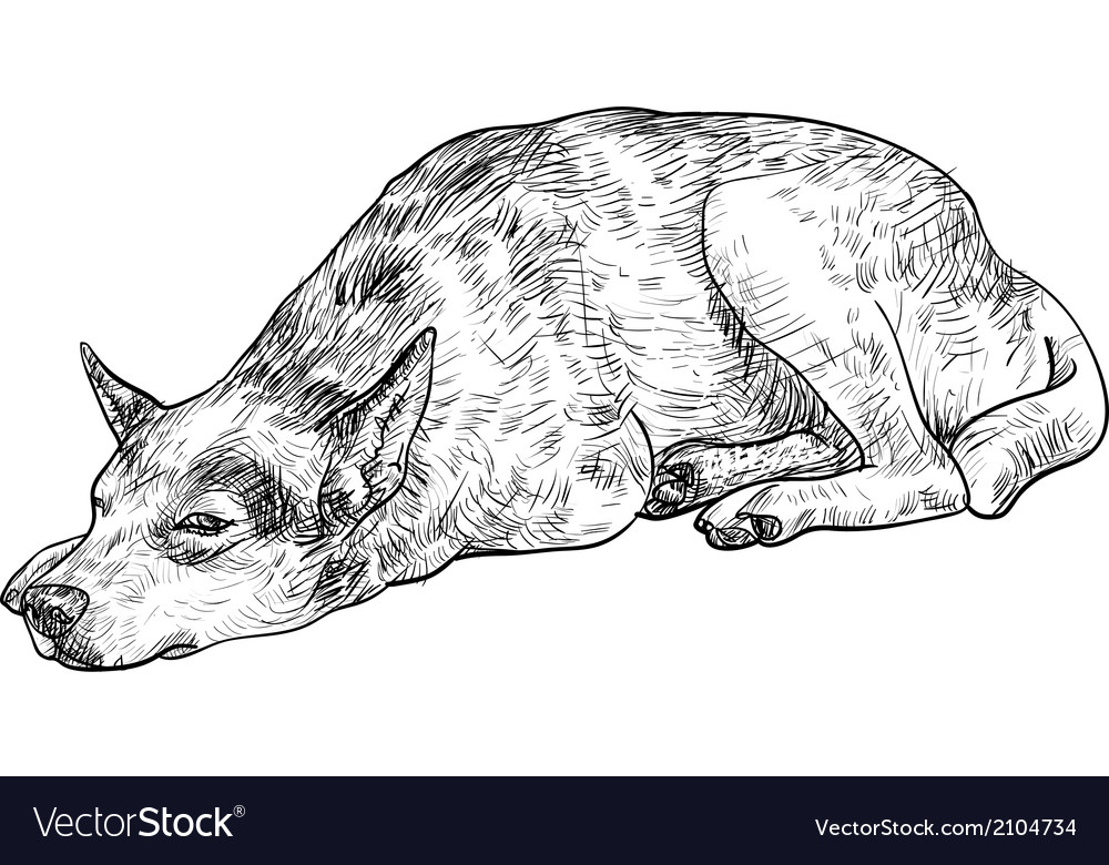 Sleepy lonely dog vector | Price: 1 Credit (USD $1)