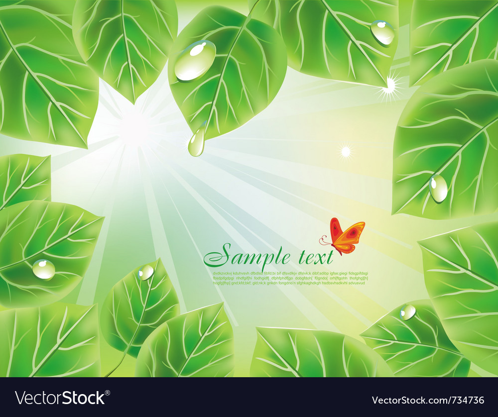 Green background with leaves vector | Price: 3 Credit (USD $3)