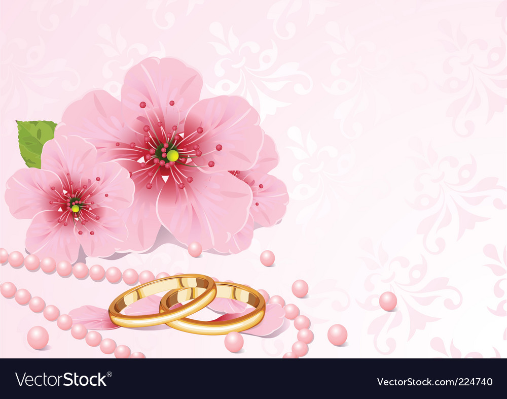Wedding rings and cherry blossom vector | Price: 1 Credit (USD $1)