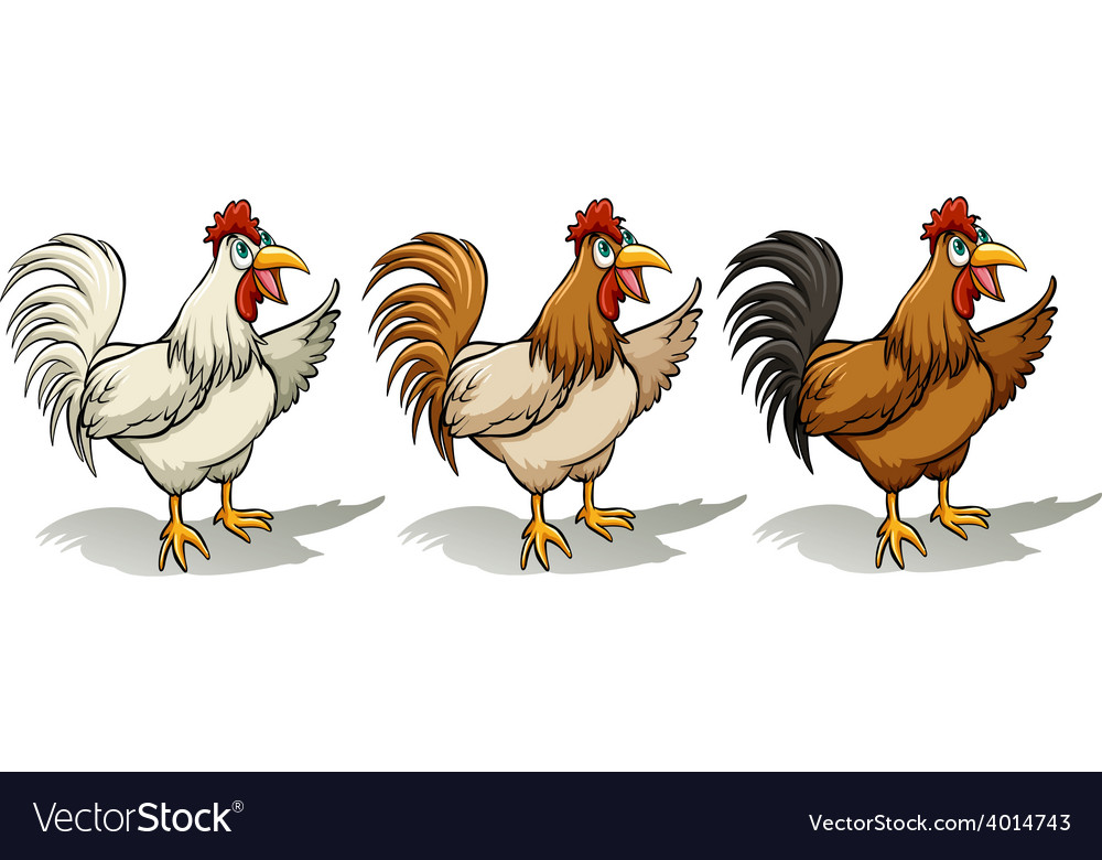 Group of roosters vector | Price: 3 Credit (USD $3)