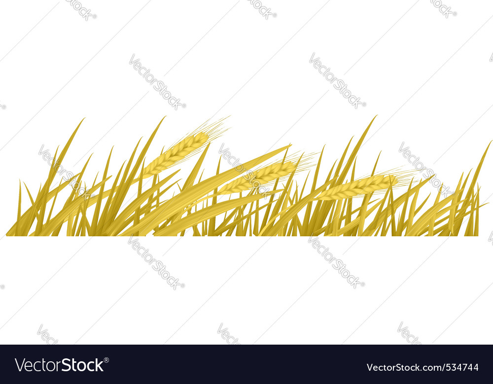 F wheat vector vector | Price: 1 Credit (USD $1)